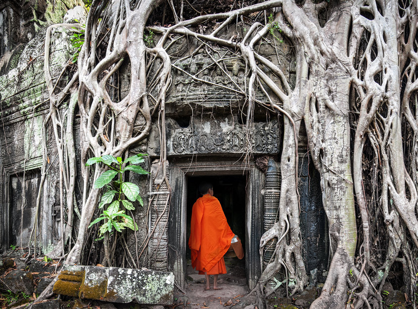 Monk in Angkor Wat Cambodia. Ta Prohm Khmer ancient Buddhist temple in jungle forest