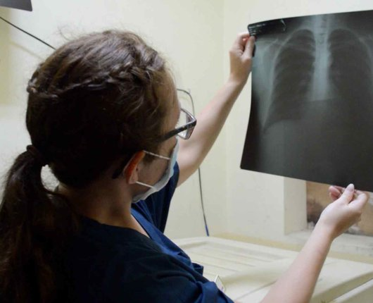 Radiography Electives in Indonesia